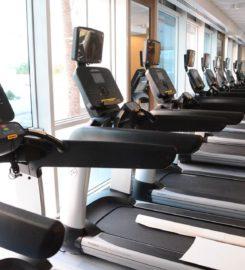 Mena Gym & Fitness